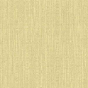 Plain Color 2 378807